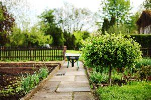 jardin-brouette